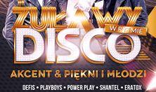 Żuławy w Rytmie Disco 2019