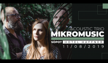 Mikromusic Acoustic Trio