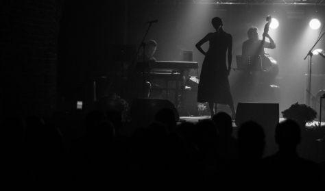 Nasz Jonasz - koncert