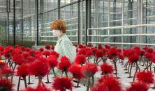 Kwiat Szczęścia, reż. Jessica Hausner