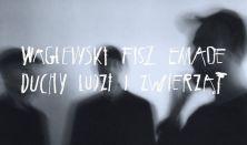 Waglewski/Fisz/Emade - koncert promujący płytę